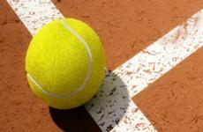 Ставки на Теннис. Стратегия ставок на фаворита.